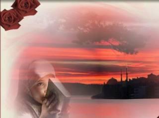Sedam razloga zašto čitati Časni Kur'an